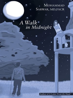 cover image of A Walk in Midnight