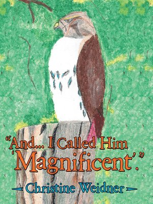 "cover image of ""And . . . I Called Him 'Magnificent'"""