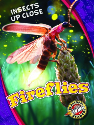 cover image of Fireflies
