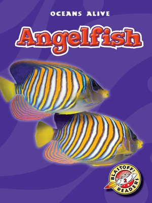 cover image of Angelfish