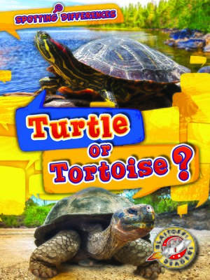 cover image of Turtle or Tortoise?