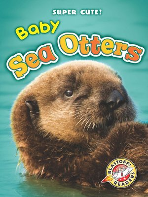 cover image of Baby Sea Otters