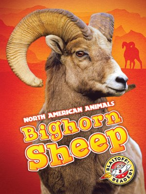 cover image of Bighorn Sheep
