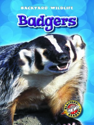 cover image of Badgers