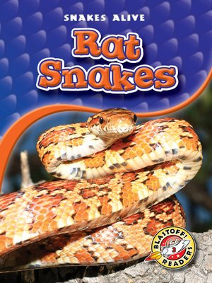 cover image of Rat Snakes