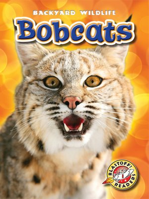 cover image of Bobcats