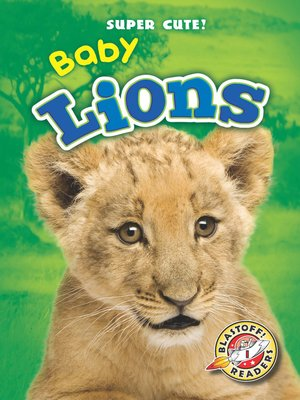 cover image of Baby Lions