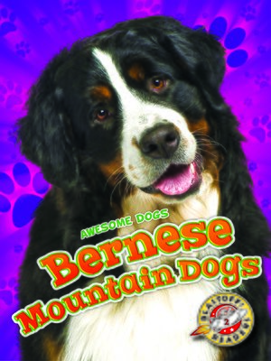 cover image of Bernese Mountain Dogs