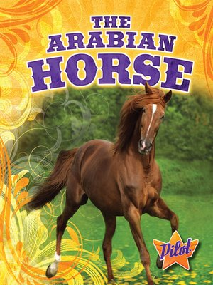 cover image of The Arabian Horse