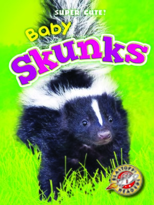 cover image of Baby Skunks