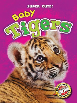 cover image of Baby Tigers