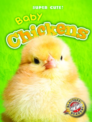 cover image of Baby Chickens