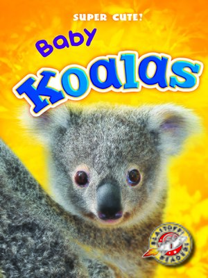 cover image of Baby Koalas
