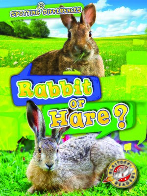 cover image of Rabbit or Hare?