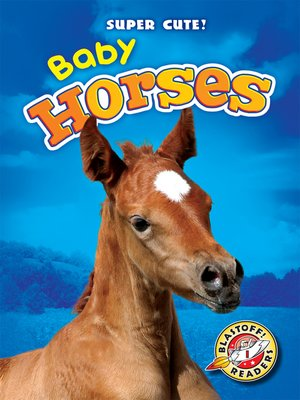 cover image of Baby Horses