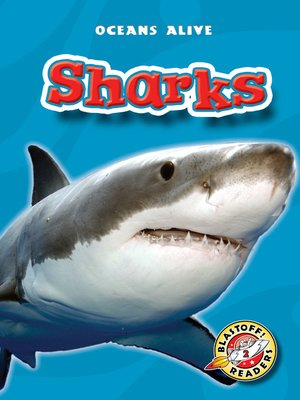 cover image of Sharks