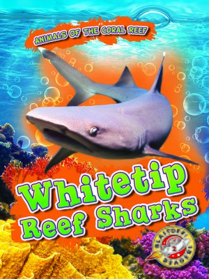 cover image of Whitetip Reef Sharks