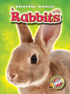 cover image of Rabbits