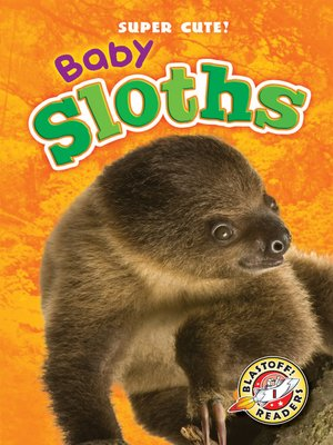 cover image of Baby Sloths