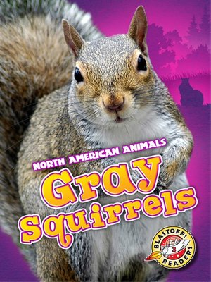 cover image of Gray Squirrels