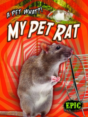 cover image of My Pet Rat
