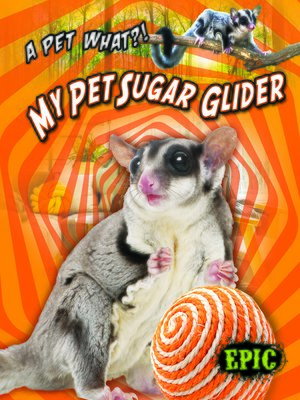cover image of My Pet Sugar Glider