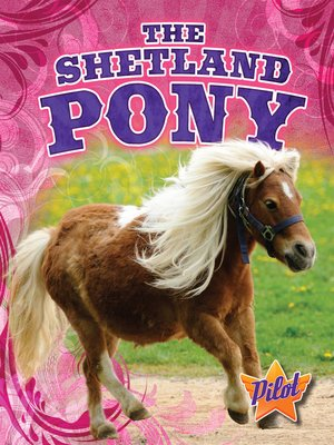 cover image of The Shetland Pony