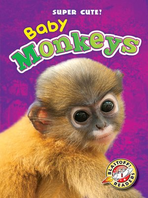cover image of Baby Monkeys