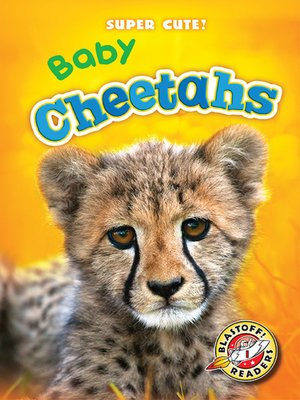 cover image of Baby Cheetahs