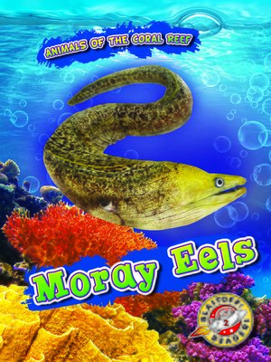 cover image of Moray Eels