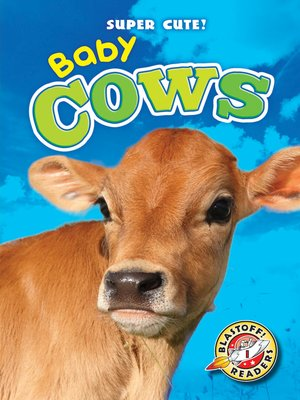 cover image of Baby Cows