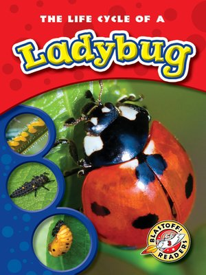 cover image of The Life Cycle of a Ladybug
