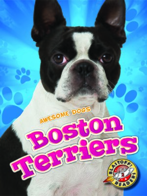 cover image of Boston Terriers