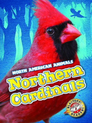 cover image of Northern Cardinals