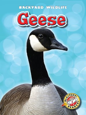 cover image of Geese