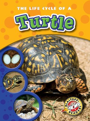 cover image of The Life Cycle of a Turtle