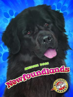 cover image of Newfoundlands