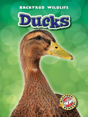 cover image of Ducks