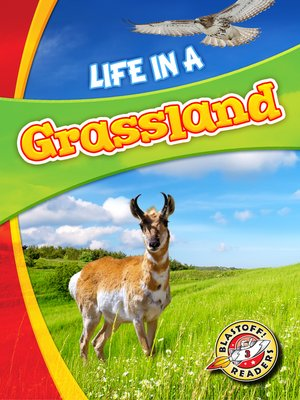 cover image of Life in a Grassland