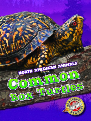 cover image of Common Box Turtles