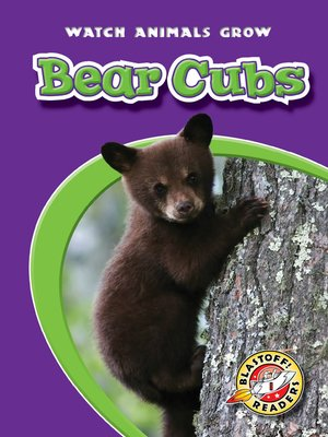 cover image of Bear Cubs