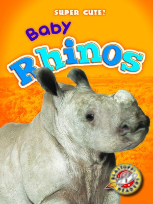 cover image of Baby Rhinos