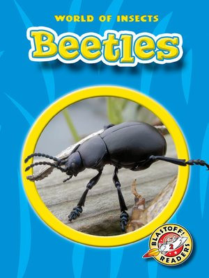 cover image of Beetles