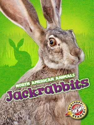 cover image of Jackrabbits