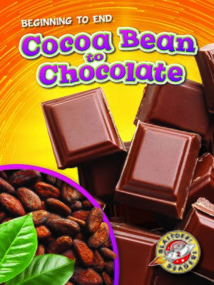 cover image of Cocoa Bean to Chocolate