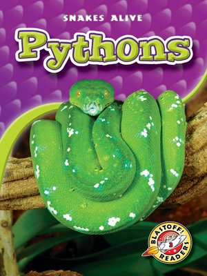 cover image of Pythons