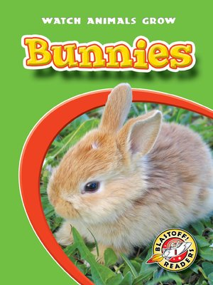 cover image of Bunnies