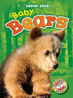 cover image of Baby Bears