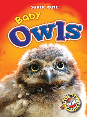 cover image of Baby Owls