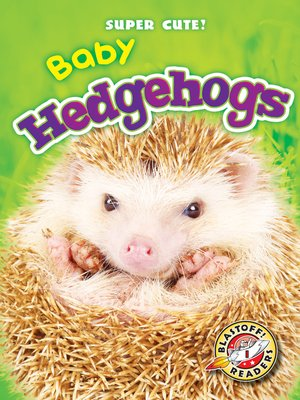 cover image of Baby Hedgehogs